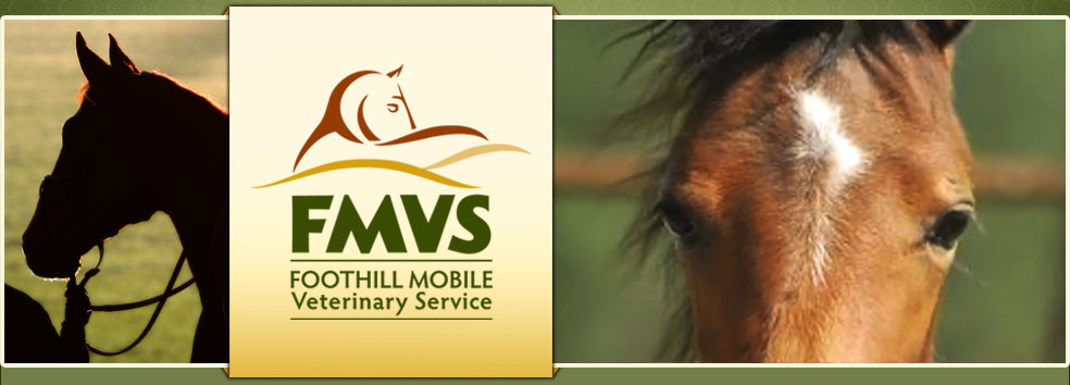 Foothill Mobile Veterinary Service